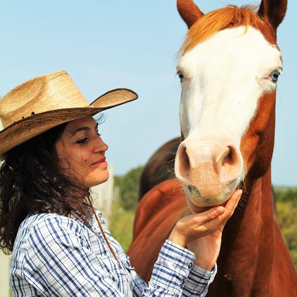 pensione-cavalli